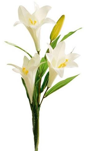 Necrologi Pistoia - fiorello muratti